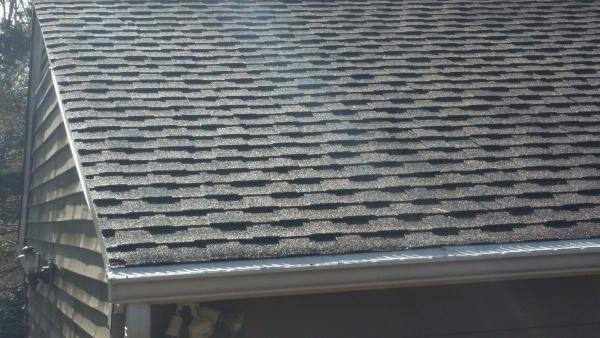 roof moss 3