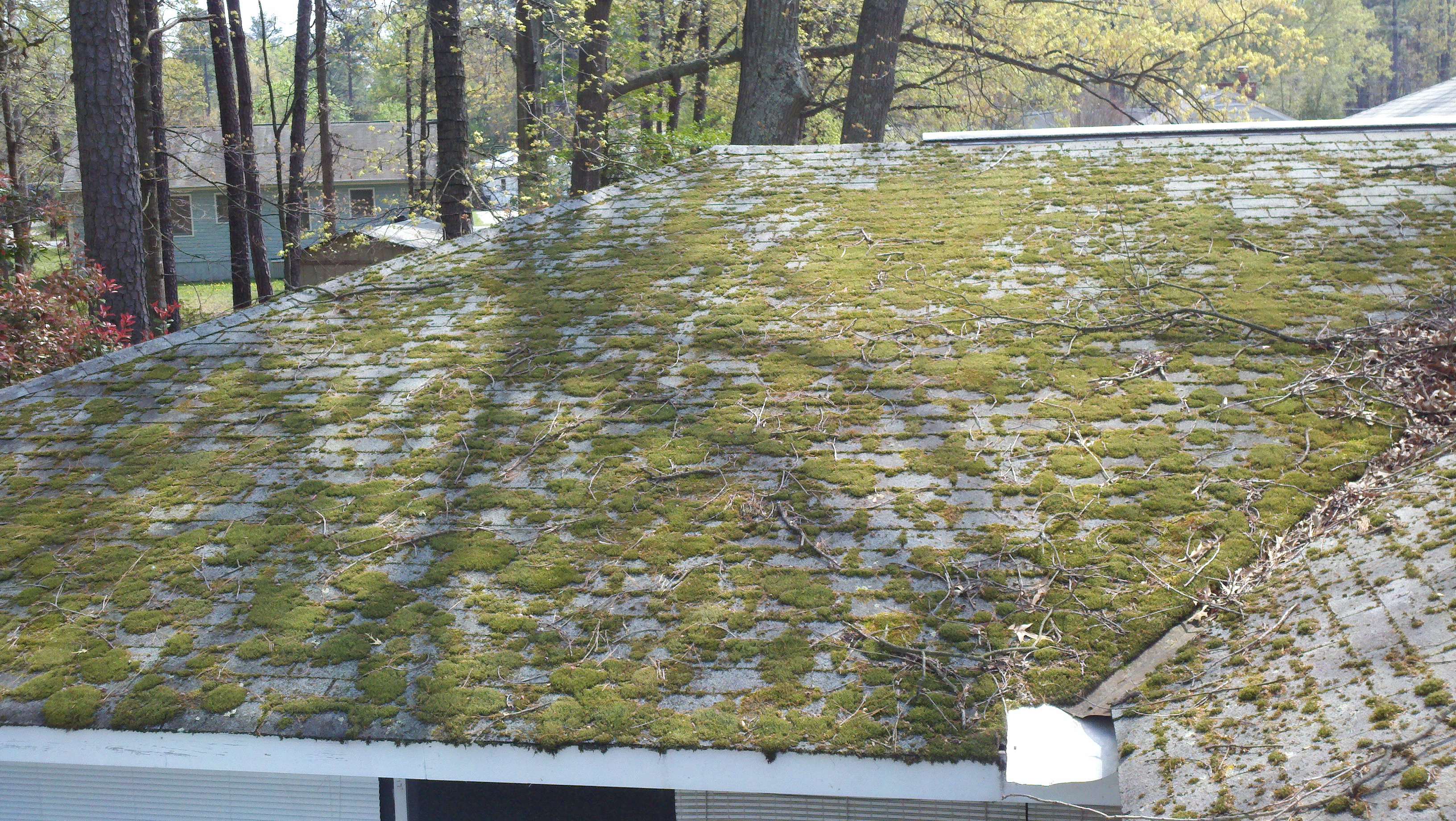 Roof Cleaning vs Roof Replacement